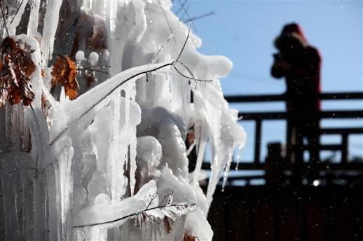겨울이 빚은 대관령 얼음풍경