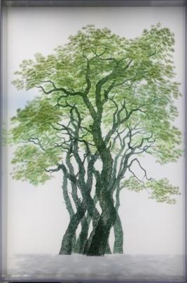 방탄유리 재질인 폴리카보네이트에 그린 소나무 그림 다섯 개를 겹쳐 입체감을 강조한 손봉채 작가의 '이주민'. 이 같은 입체회화의 영감은 대학 강사 시절 투명 OHP 필름을 활용한 학생의 커닝페이퍼에서 우연히 얻었다. 사비나미술관 제공