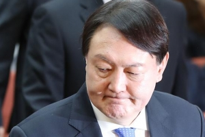 검찰 '윤석열 처가 의혹' 고발인 조사