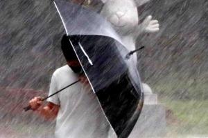 태풍 '장미' 상륙… '우산이 무용지물'