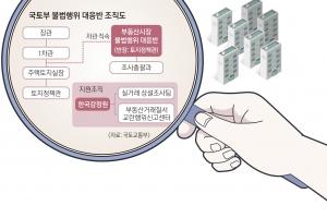 투기·집값 잡을 묘수냐…시장개입 역풍 악수냐