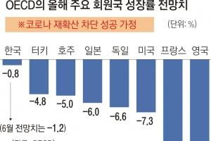 """OECD, 부동산 돈 쏠림 경고하면서도 """"韓 집값 안정세""""… 대체 왜…"""