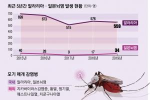 모기 '앵~'하면… 말라리아·일본뇌염 감염 위험지역 안 가고, 긴…