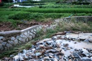 광주 북구 저수지 인근 개울 제방 무너져…'둑 붕괴'로 오인 신고…