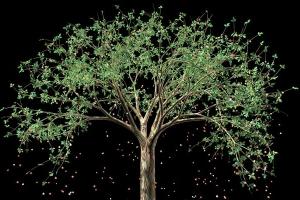 피고 지는 자연과 생명, 3D 애니메이션으로 창조하다