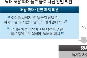무늬만 '낙태 허용'… 40일 버티다 국회로 공 넘긴 정부