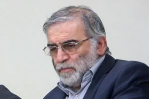 """이란, 핵과학자 피살에 """"배후는 이스라엘"""" 복수 다짐"""