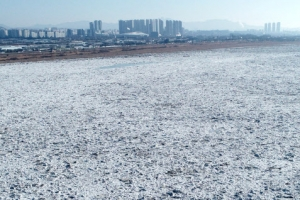 유빙으로 뒤덮인 한강