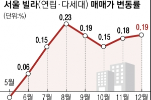 """""""공공재개발 호재에 3억 뛰어""""… 서울 빌라도 고공행진"""
