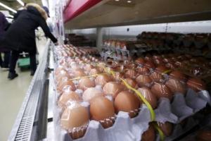 살처분 산란계 1000만 마리 넘어… 달걀 산지가격 1년새 46% 올랐다…