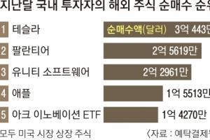 '서학개미' 잠 못 든 2월… 거래 56조원 역대 최대