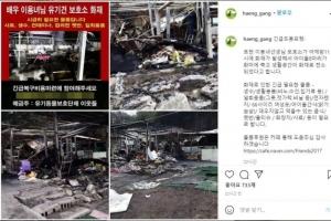 """이용녀 유기견 보호시설서 불나 8마리 폐사…""""견사서 쪽잠"""""""