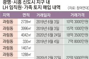 지분 쪼개고 나무 심고… 보상 업무 직원들 '조직적 투기' 의혹