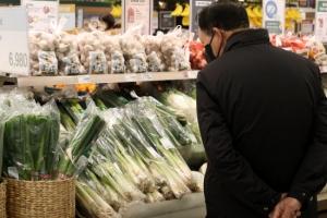 파 227%·고춧가루 35% 뛰어… '파김치' 된 밥상