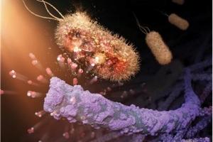 형광등, 백열등 빛만으로 공기 중 바이러스 박멸한다