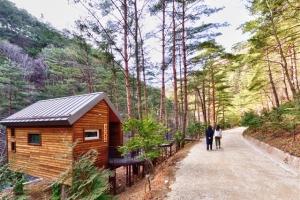 천혜의 숲·계곡·바다가 어우러졌다… 삼척, 휴양·힐링도시 각광