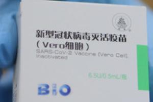 시노팜 백신, 글로벌 구원투수 될까?