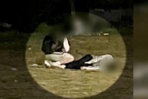 """""""정민이 누워있고, 친구는…"""" 추가 목격자가 직접 찍은 사진"""