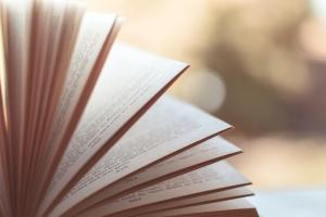 성도착증·성매매 다룬 작품 읽힌 외국인 교수…한국외대 재임용서…