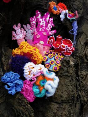 뜨개질로 되살리는 제주 산호숲. 오롯 제공
