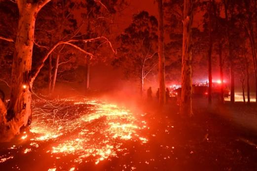 기후변화에 관한 정부 간 협의체(IPCC)가 새해를 '2050년 기후 대재앙'을 막을 수 있는 마지막 시기로 분석한 가운데 지구온난화로 인한 재앙의 전조로 평가되는 현상들이 지구 곳곳에서 나타났다. 기후변화로 숲이 건조해진 탓에 산불이 두 달 이상 꺼지지 않는 호주 뉴사우스웨일스주 나우라 마을 인근 숲에서 31일 소방관들이 불길을 잡아 보려 분투하고 있다. 나우라 AFP 연합뉴스