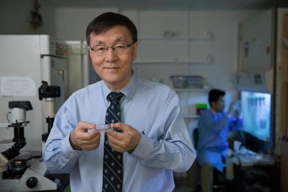 김광수 하버드대 교수 세계 최초 맞춤형 줄기세포로 파킨슨병 치료