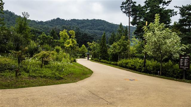 2013년 서울 최초로 조성한 시립수목원인 푸른수목원.