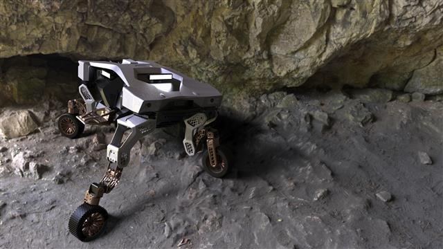 [서울신문] 현대 자동차 최초 변신 로봇 '타이거'